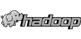 The Apache Hadoop software library is a framework that allows for the distributed processing of large data sets across clusters of computers using simple programming models